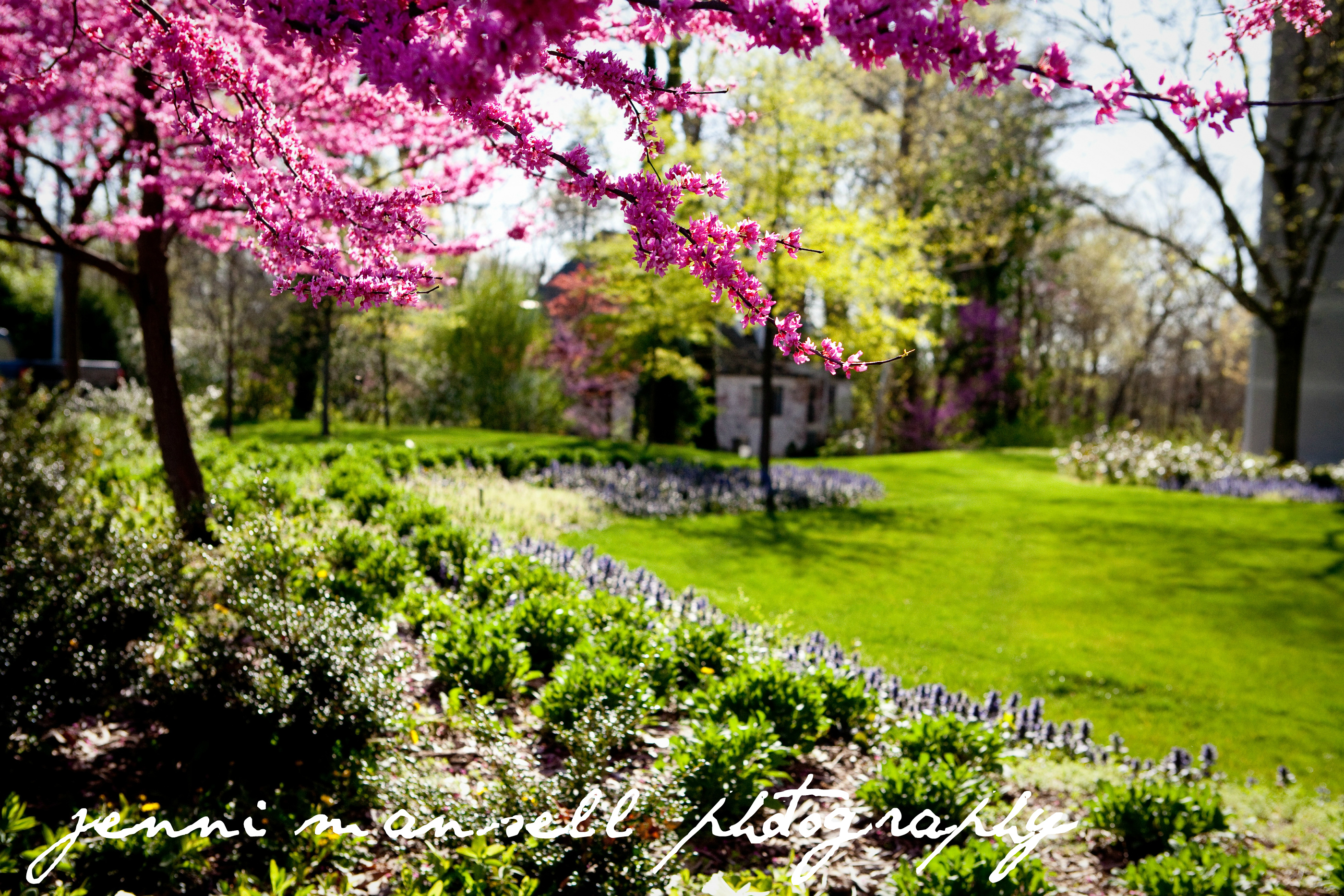 springtime indiana | jenni mansell photography