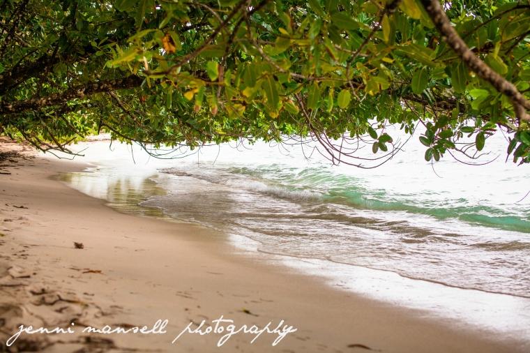 On an uninhabited island enjoying Playa Zapatilla.  It felt like Castaway!