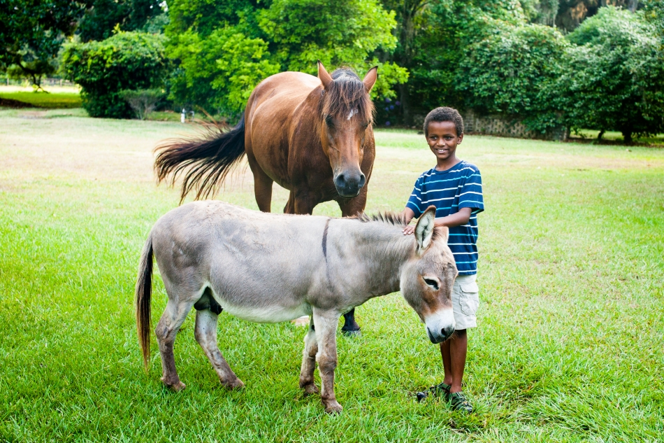 My nephew with some of the local animals.  :)
