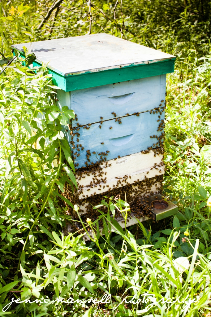 The bees whose wax/honey is used is some of their products.